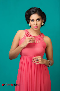 Tamil Actress Chandini Tamilarasan Latest Picture Shoot Gallery  0010