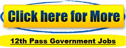 Government Jobs for 12th Pass 2017-2017: Government Jobs for 10th Pass 2017 2018 :indjobsalert.com, India 12th Pass jobs alerts, free sarkari naukri Alert in India, 12th pass governemnt jobs alert 2017