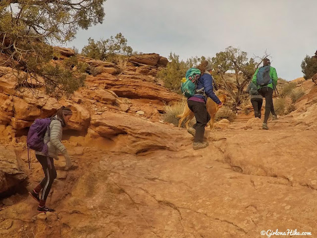 Hiking to Long Bow Arch, Moab, Utah, Hiking in Moab with Dogs, Hiking in Utah with Dogs