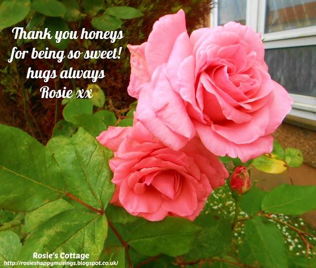 Thank you honeys for being so sweet, hugs always, Rosie xx