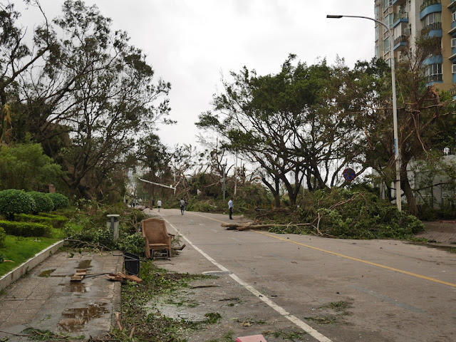 debris from Typhoon Hato at the Bay Bar Street in Zhuhai
