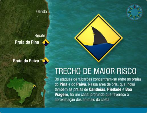 Morre Turista Atacada Por Tubarao Em Recife Onda Gringa