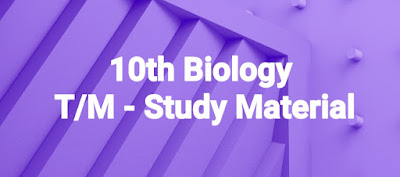 10th Biology - T/M - Study Material    AP SSC/10th class Biological science, Biology English and Telugu medium materials ,Biology telugu  medium,English medium  bitbanks, biology Materials in English,telugu medium , AP biology materials SSC New syllabus ,we collect Biology English,telugu medium materials like Sadhana study material ,Ananta sankalpam materials ,M Materials,IASE Kurnool  Materials ,CCE Materials, and some other materials...These are very usefull to AP Students to get good marks and to get 10/10 GPA. These Biology Telugu English  medium materials is also very usefull to Teachers and students in AP schools...    Here we collect ....Biology   10th class - Materials,Bit banks prepare by Our Govt Teachers ..Utilize  their services ... Thankyou..