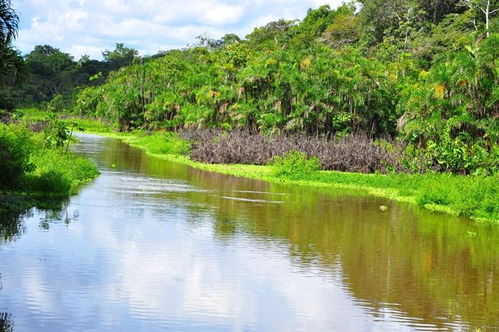 World Beautifull Places: Amazon Rainforest South America ...