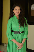 Geethanjali in Green Dress at Mixture Potlam Movie Pressmeet March 2017 088.JPG