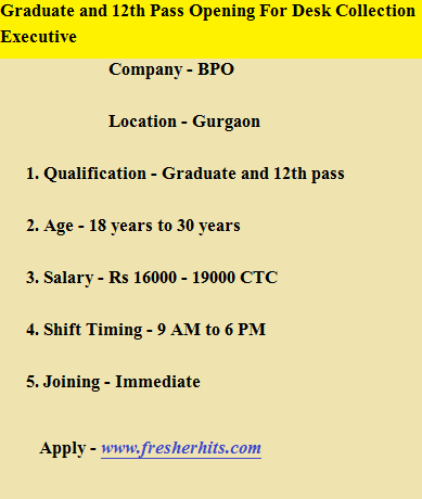 Graduate and 12th Pass Opening For Desk Collection Executive