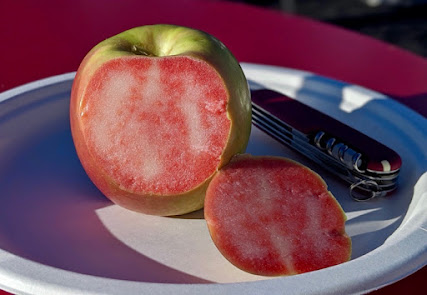 Apple sliced to reveal magenta and white marbled flesh.