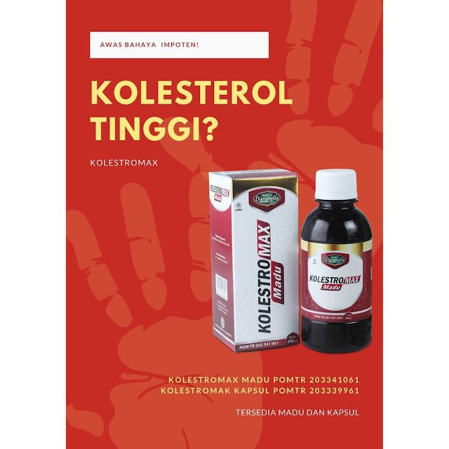 penyakit kolesterol