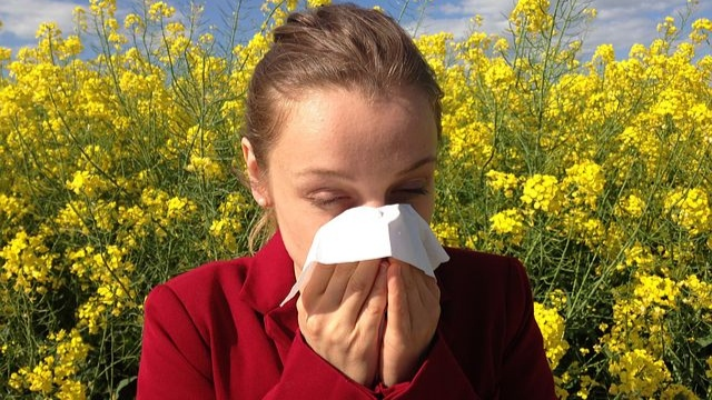 Berbagai Macam Obat Alergi Yang Perlu untuk Diketahui
