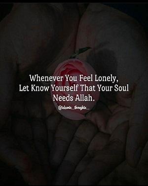 Chaque fois que vous vous sentez seul, faites-vous savoir que votre âme a besoin d'Allah.