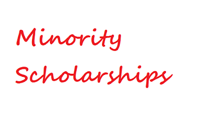 scholarship specially for minority students
