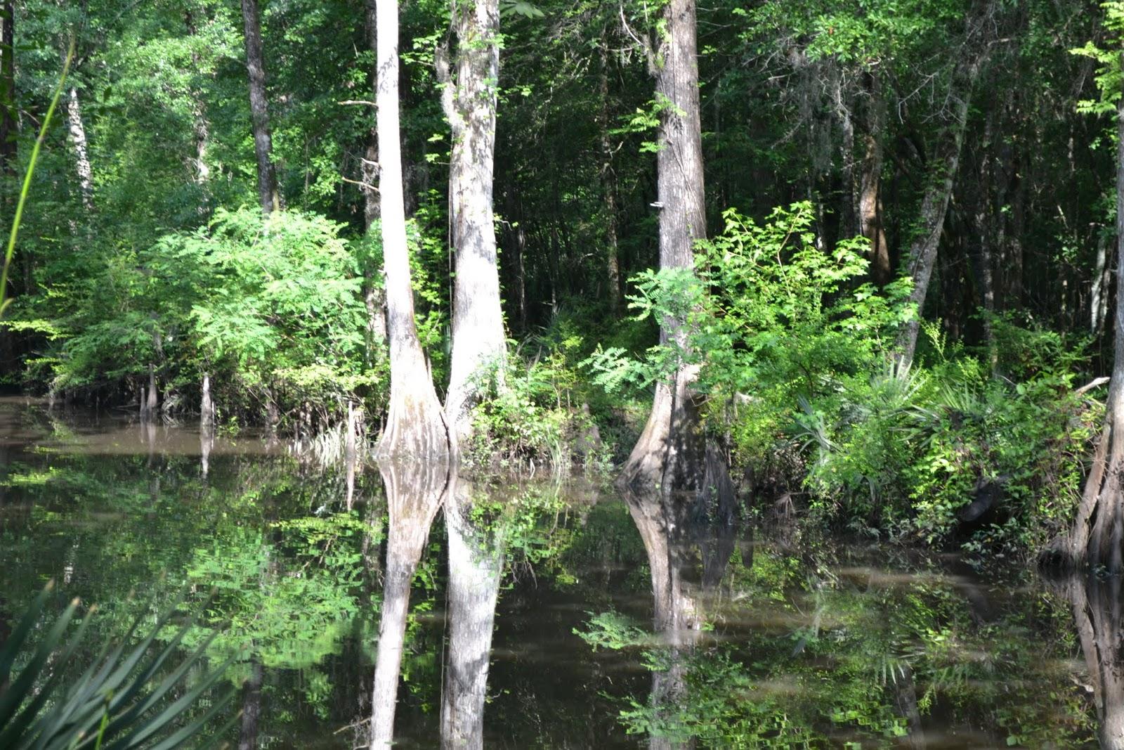Исторический канал Саванна - Огичи (Historic Savannah-Ogeechee Barge Canal, Savannah, GA)