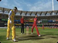 Ashes Cricket 2009 Snapshot 4