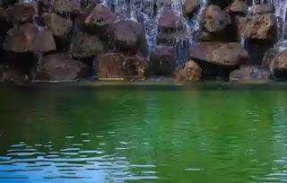 Air Kolam Berubah Warna, Masihkah Suci?