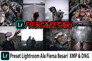 Preset Lightroom Ala Fiersa Besari DNG & XMP