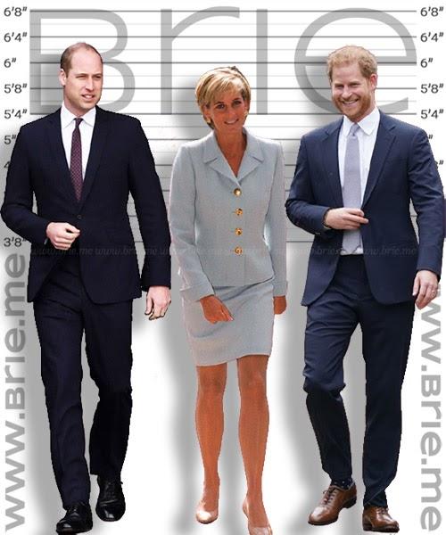 Prince William, Princess Diana and Prince Harry height compariso