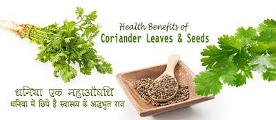 धनिया एक महाऔषधि Coriander Benefits in Hindi