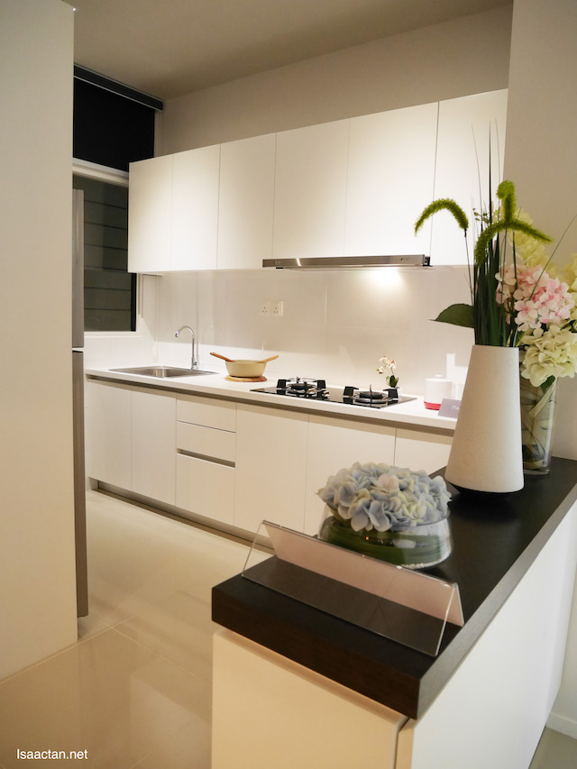 Compact, beautiful kitchen