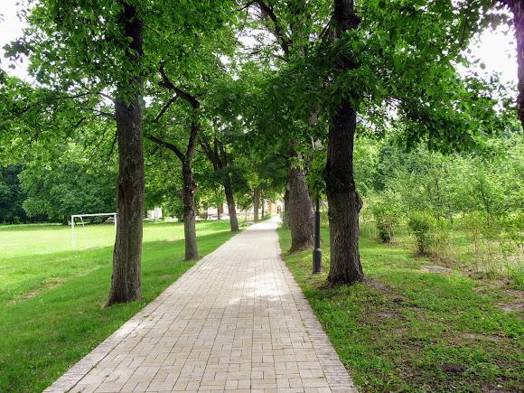 Батурин. Парк Кочубея. Пам'ятка садово-паркового мистецтва