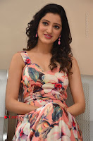 Actress Richa Panai Pos in Sleeveless Floral Long Dress at Rakshaka Batudu Movie Pre Release Function  0124.JPG