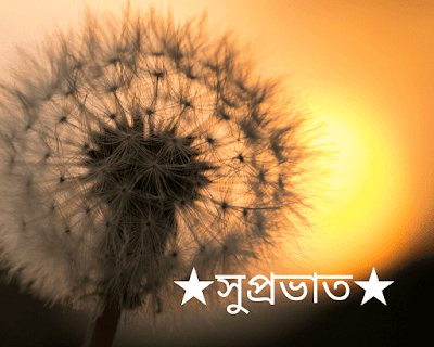 Bengali good morning Images for whatsapp/Facebook