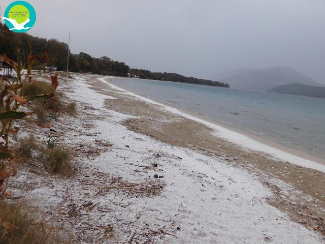 Παγωμένα τοπία στο Δέλτα Καλαμά (15 ΦΩΤΟ)