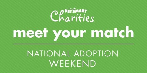 Dog Adoption Events Saturday Lehigh Valley