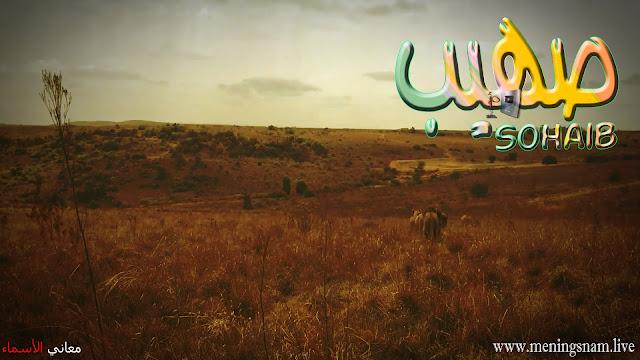 معنى اسم صهيب وصفات حامل هذا الآسم Sohayb
