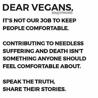 vegan comfort zone
