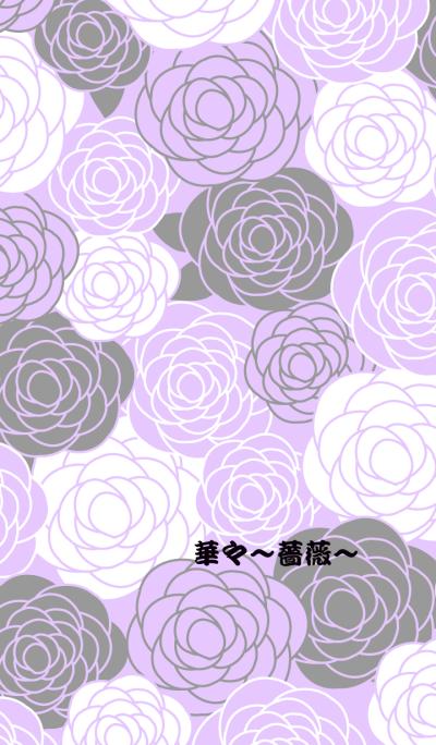 Flowers -Rose-