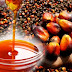 APOI: Edo leading in regional effort to revive oil palm devt