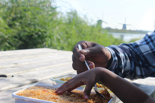 Free things to do in Rotterdam - Kinderdijk Windmills