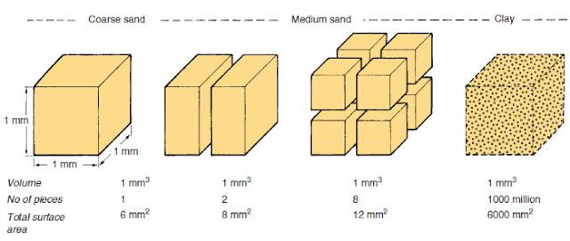 ilustrasi luas permukaan