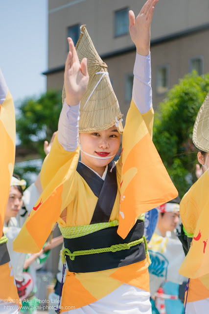 天狗連、熊本地震被災地救援募金チャリティ阿波踊り、女踊りの踊り手の写真 2