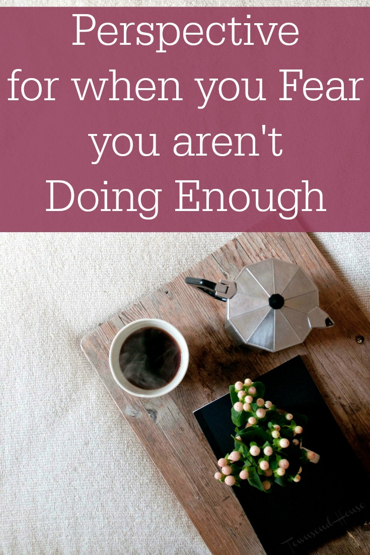 Perspective for When you Fear you aren't Doing Enough in your Homeschool
