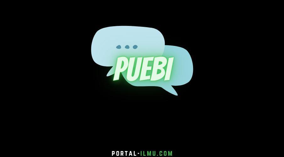 Mengenal PUEBI, Pengganti EYD
