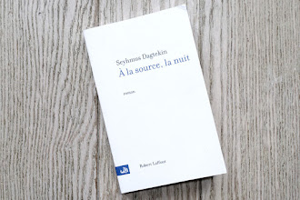 Lundi Librairie : A la source, la nuit - Seyhmus Dagtekin