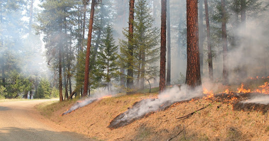 Heppner Ranger District prepares to implement prescribed burn
