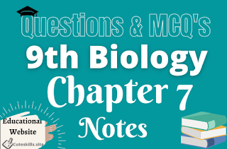 9th Biology Chapter 7 Bioenergetics Notes