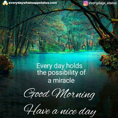good morning images hd | Everyday Whatsapp Status | Unique 20+ Good Morning Images With Quotes