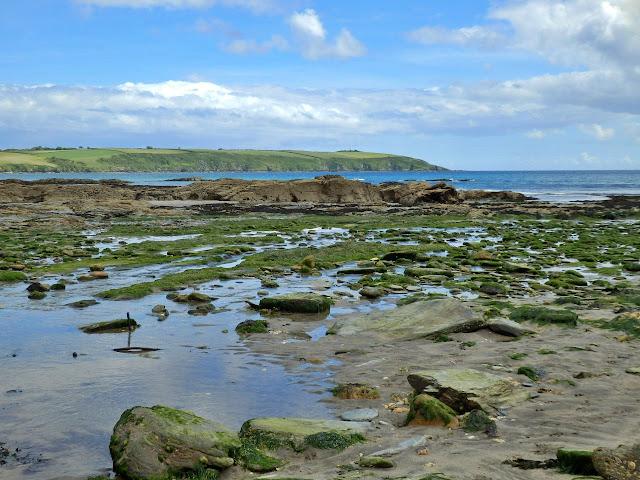 Looking across Spit Beach towards Gribbin Head, Cornwall
