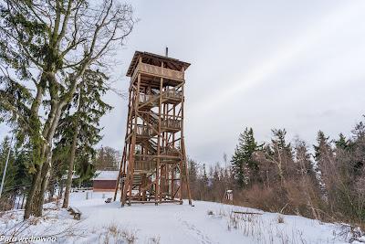 Wieża widokowa pod Dzikowcem od strony zachodniej