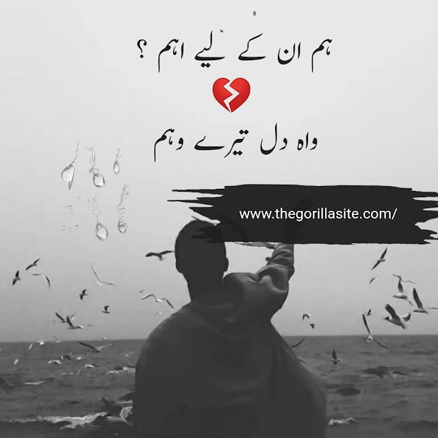 Hum Un Ky Liye Aham? \ 250+ Sad Urdu Hindi Poetry 2020