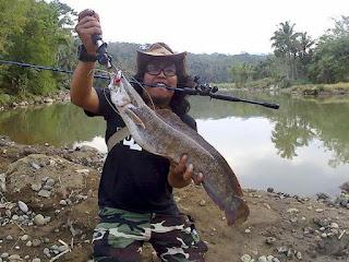 Umpan Mancing ikan Lele