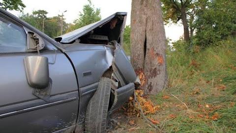 Szörnyű halálos baleset: fának csapódott egy autó Gibártnál