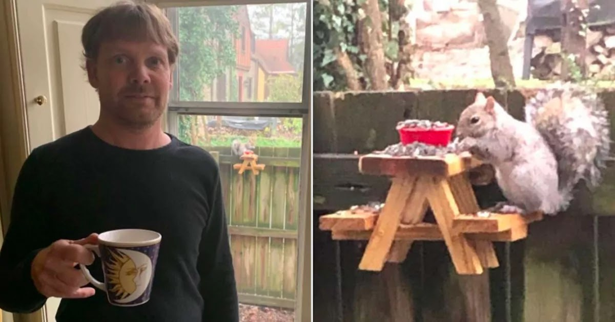 Man Builds Tiny Picnic Table For Squirrels In His Garden And Now Has A Booming Online Business