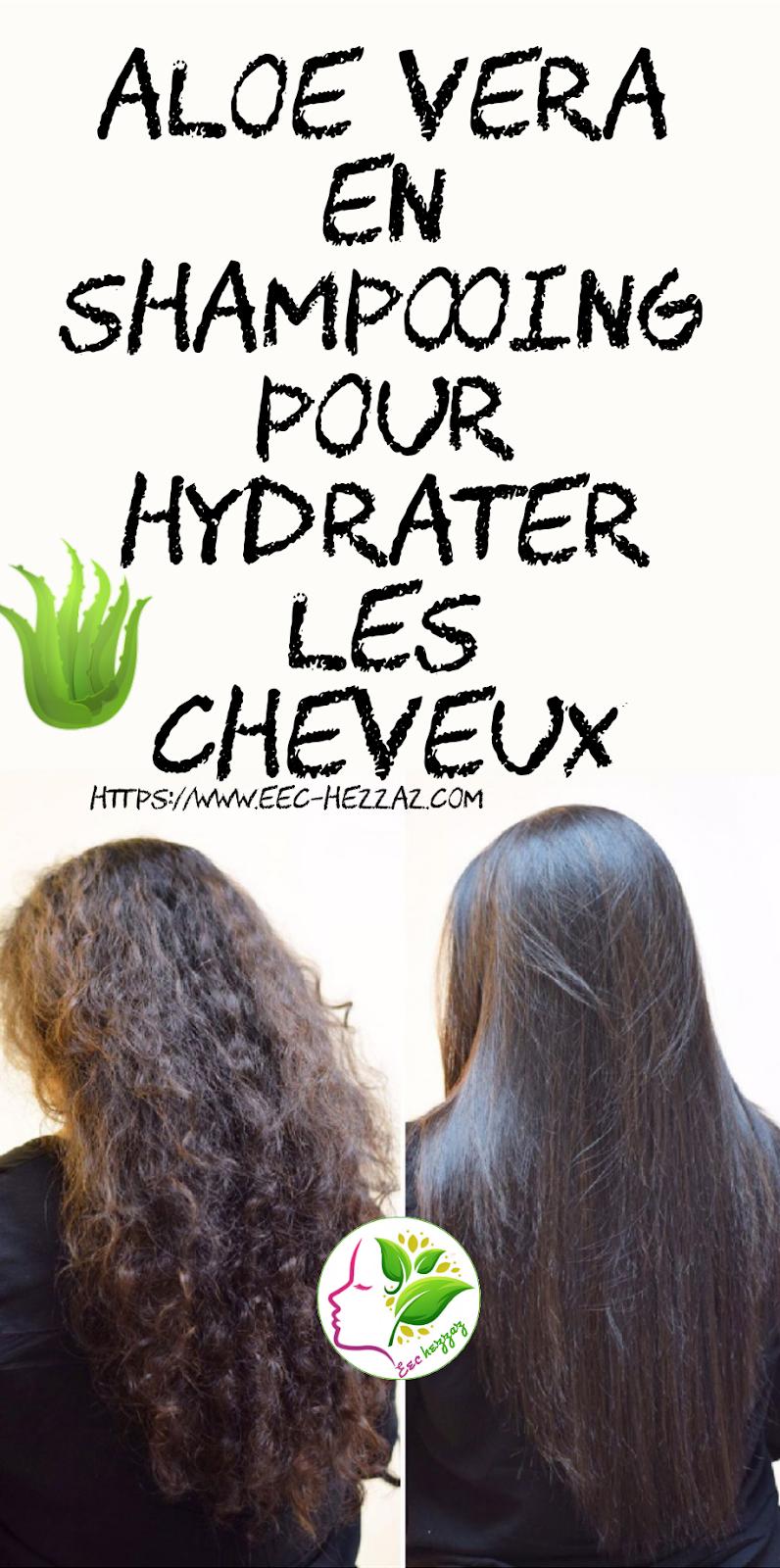 Aloe vera en shampooing pour hydrater les cheveux