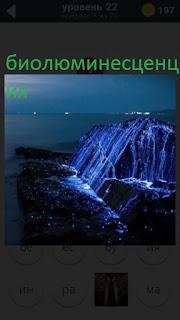 470 слов. все просто биолюминесценция на берегу и в воде 22 уровень
