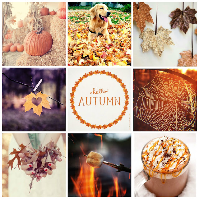 Top 15 Things About Autumn/Fall 2015
