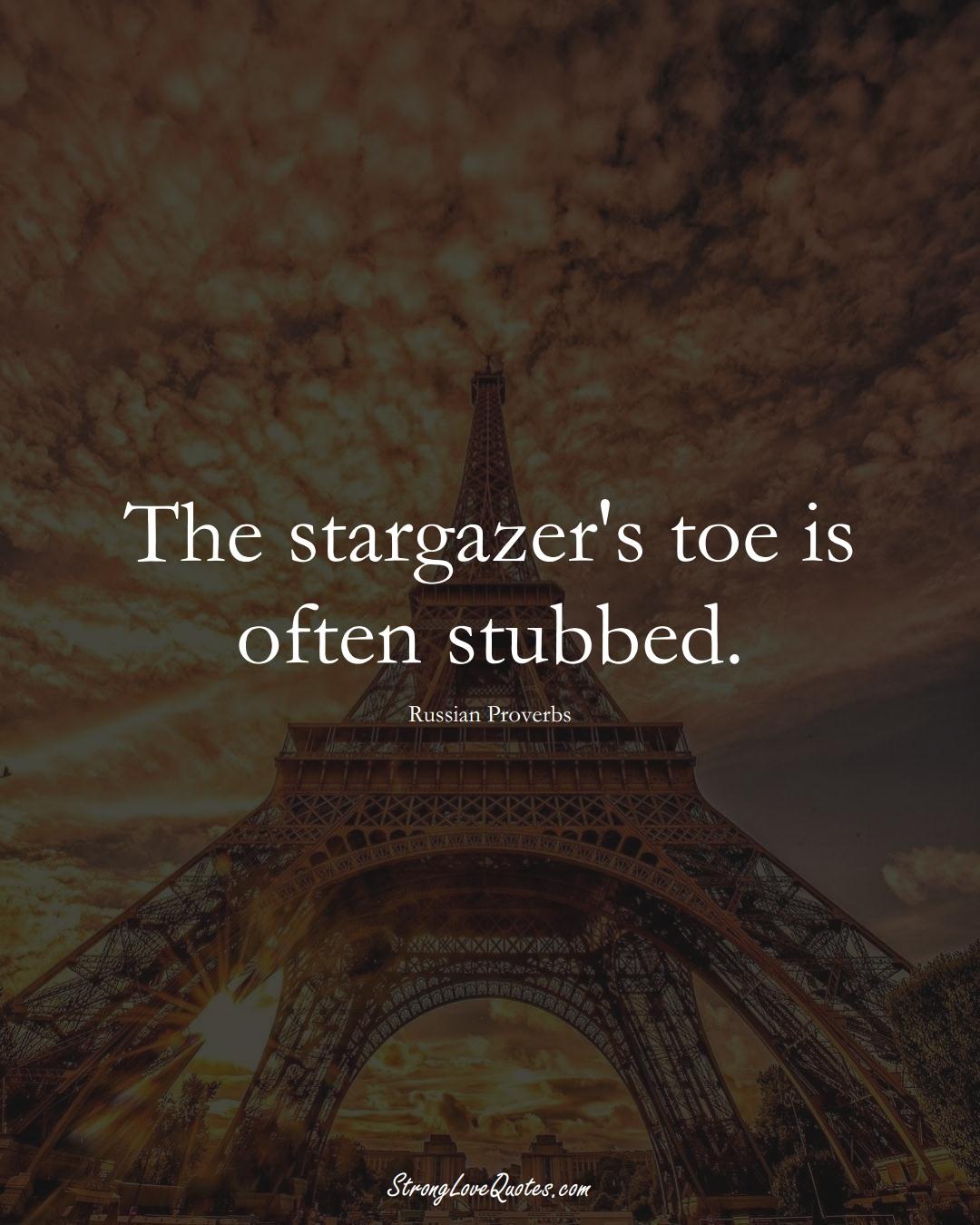 The stargazer's toe is often stubbed. (Russian Sayings);  #AsianSayings